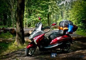 W trasie, odpoczynek w lasach pod Raciborzem. T-Rex 50