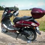 Moto Magnus T-Rex