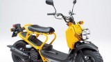Honda Zoomer: Z bliska