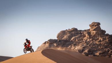 Joan Barreda Bort. Dakar 2021, etap IV