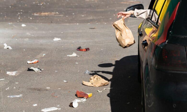 Śmiecenie na drogach, śmieci