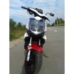 Zdjęcie profilowe kargulec12