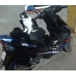 Zdjęcie profilowe Rafal_151