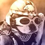 Zdjęcie profilowe Vinnie