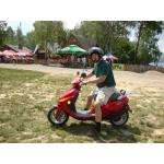 Zdjęcie profilowe husky