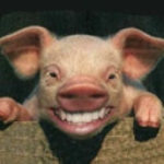 Zdjęcie profilowe booger