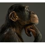 Zdjęcie profilowe kriss1013
