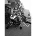 Zdjęcie profilowe kosa747