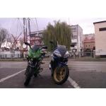 Zdjęcie profilowe TheMiqlaq