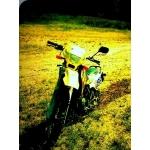 Zdjęcie profilowe Caldir