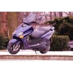 Zdjęcie profilowe nibiru